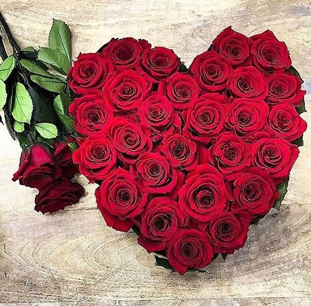 Pin By Amal Rayyan On Flowers Heart Clothes Rose Flowers