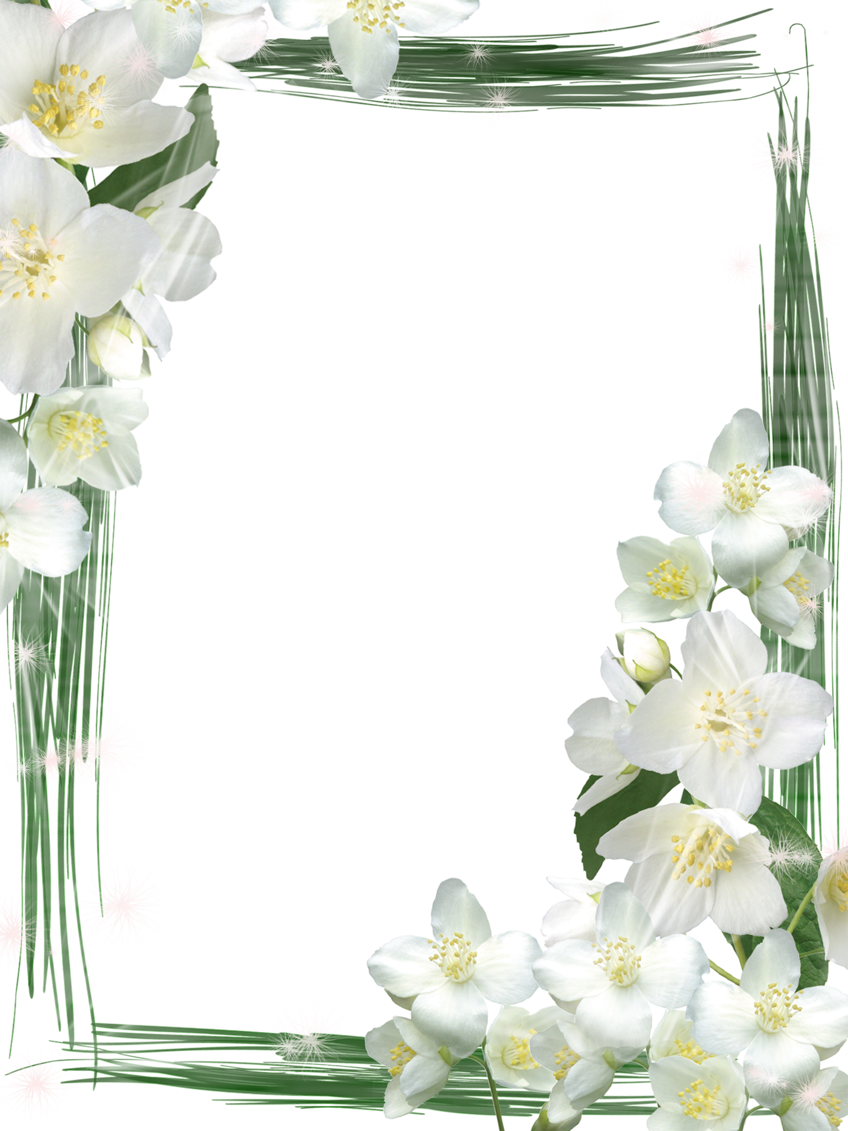 Transparent Green Frame With White Flowers Gallery Yopriceville High Quality Images And Transparent Png Free C Flower Frame Png Flower Frame White Flowers