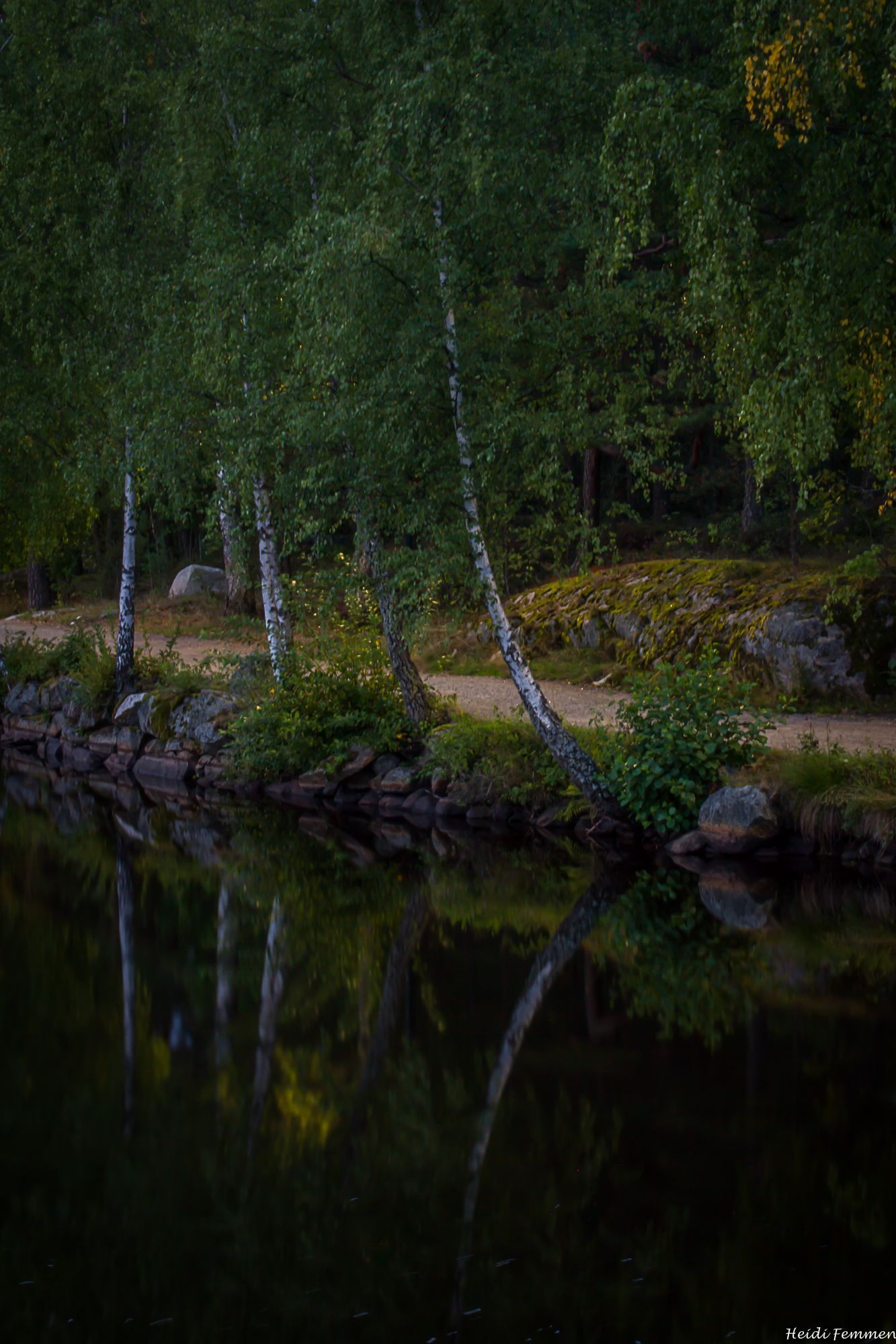 The trees are reflekted in the pond. Fredrikstad, Norway Copyright: Heidi Femmen