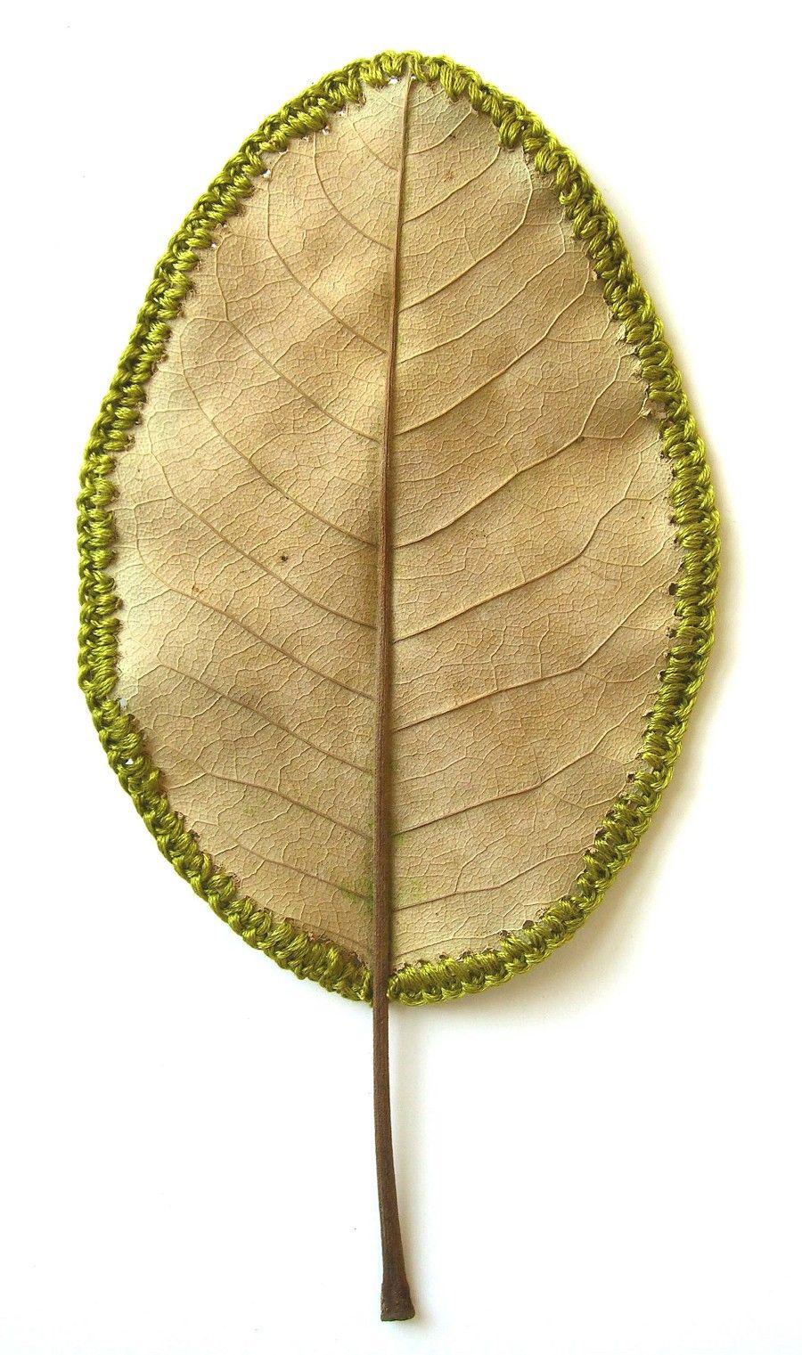Beautiful! A magnolia leaf with crochet edge by Susanna Bauer.