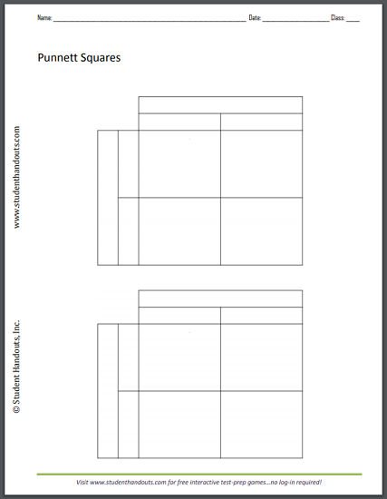 Monohybrid Cross Punnett Square Worksheet - Free to print ...