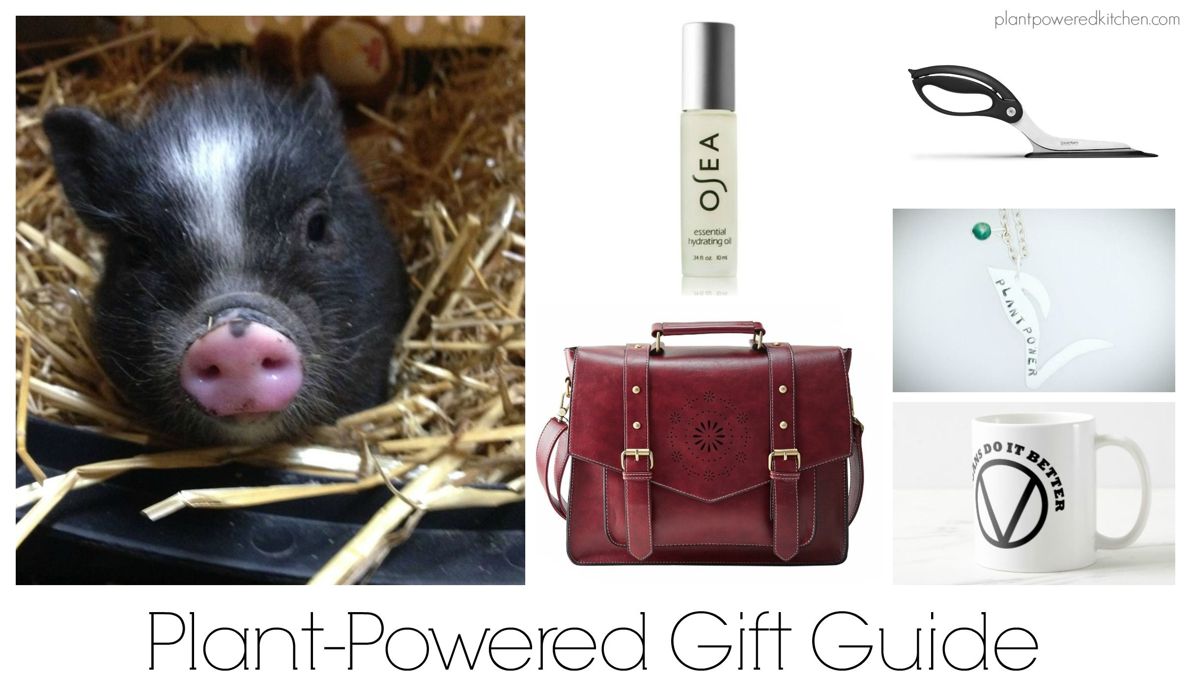 Gifts for Vegans and Plant-Powered Gifts | Holiday Gift Guide ...