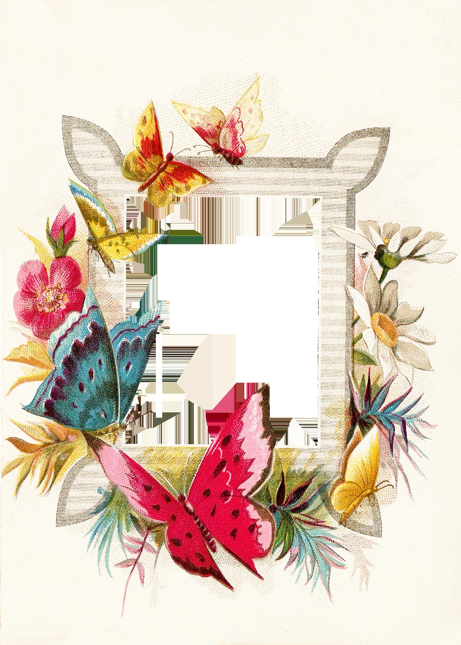 catnipstudiocollage free vintage clip art a circlet of
