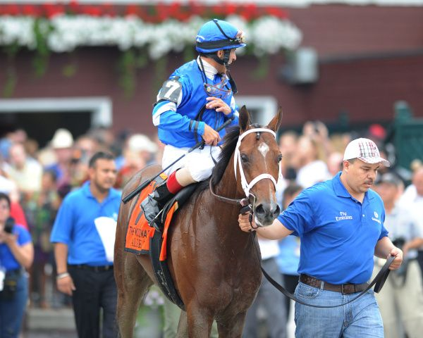 Alpha and John Velazquez, the winners of the $750,000 Woodward Stakes Gr.1 on August 31, 2013 at Saratoga. (NYRA Photo)