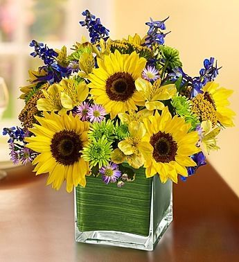 Fields Of Europe For Summer In Cube Vase Flower Delivery Blooming Flowers Same Day Flower Delivery