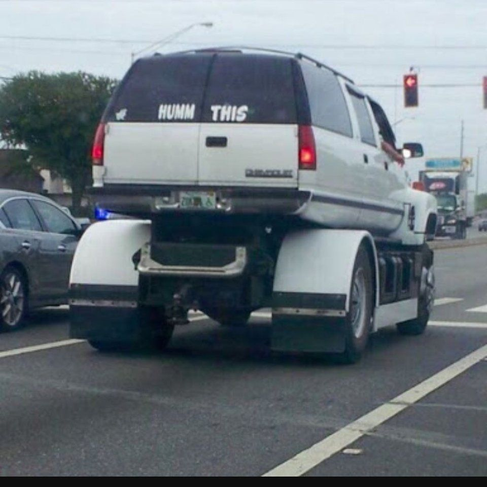 Only in Florida would you see something like this.
