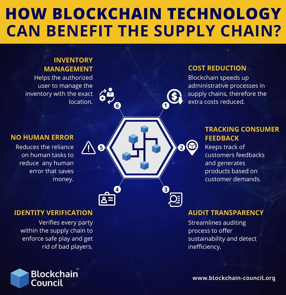 How Blockchain Technology Can Benefit The Supply Chain Supply Chain Infographic Blockchain Technology Supply Chain