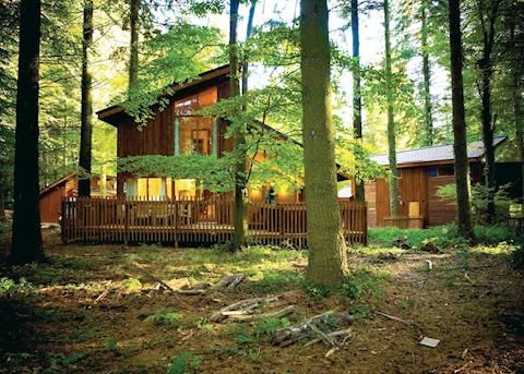 Things You Can Do At Forest Of Dean Canoe Trips Lodge Retreats Hiking Trails What Time Of Year Is The Forest Of Dean Log Cabin Holidays Holidays In England