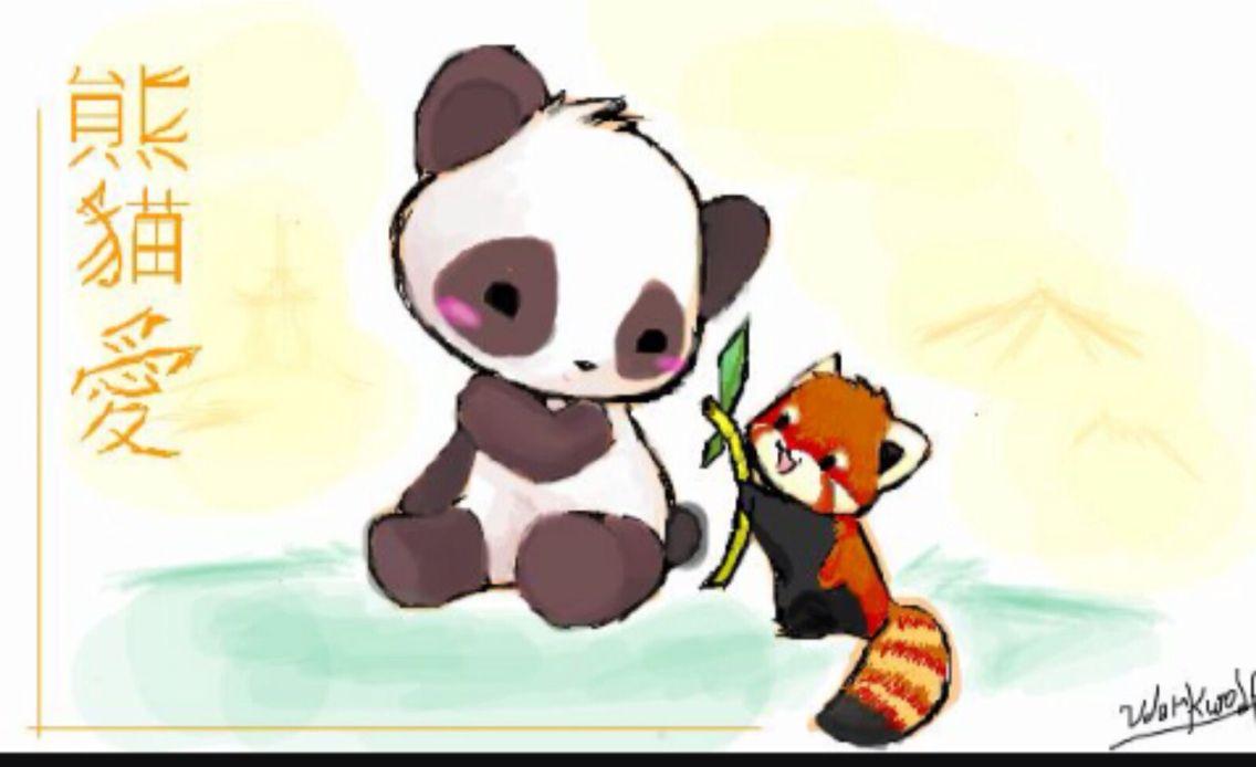 Osos Pandas Dibujo, Dibujos
