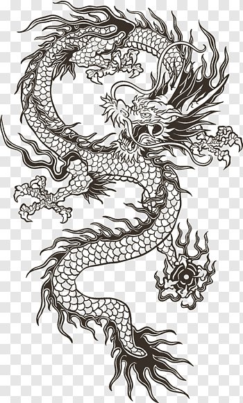 Chinese Dragon Illustration Chinese Dragon Totem Black Dragon Illustration Free Png In 2020 Dragon Illustration Chinese Dragon Tattoos Black Dragon Tattoo