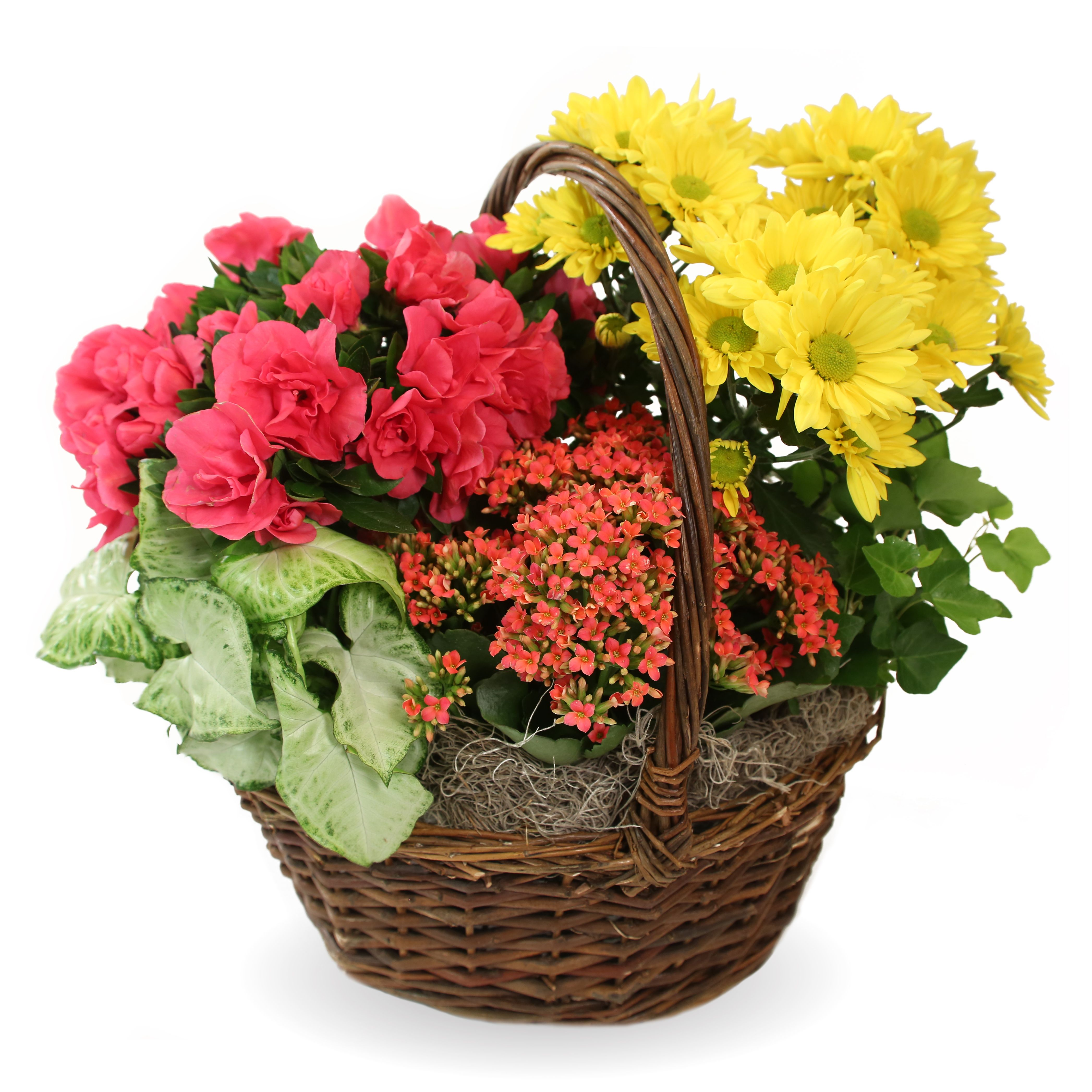 Funeral home website features funeral floral