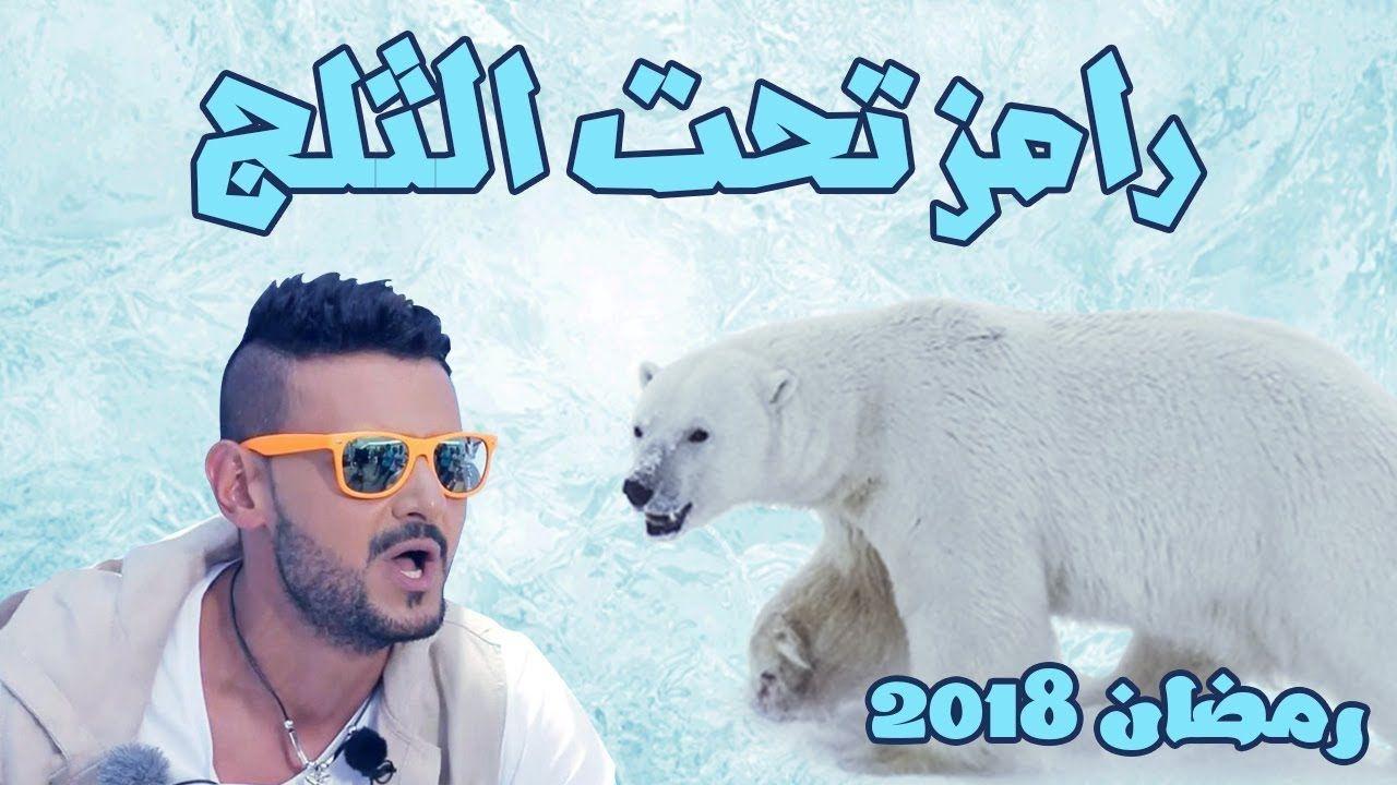 3 نجوم رفضوا الظهور مع رامز جلال ليلى علوي اعتذرت لهذا السبب الغريب بوابة عرب ترك Polar Bear Animals Bear