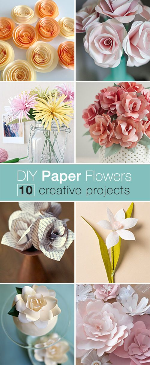 DIY Paper Flowers | Diy paper, Spider mums and Crepes