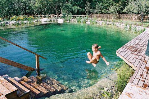 Construir una piscina natural en 10 pasos - BioNova piscinas ...