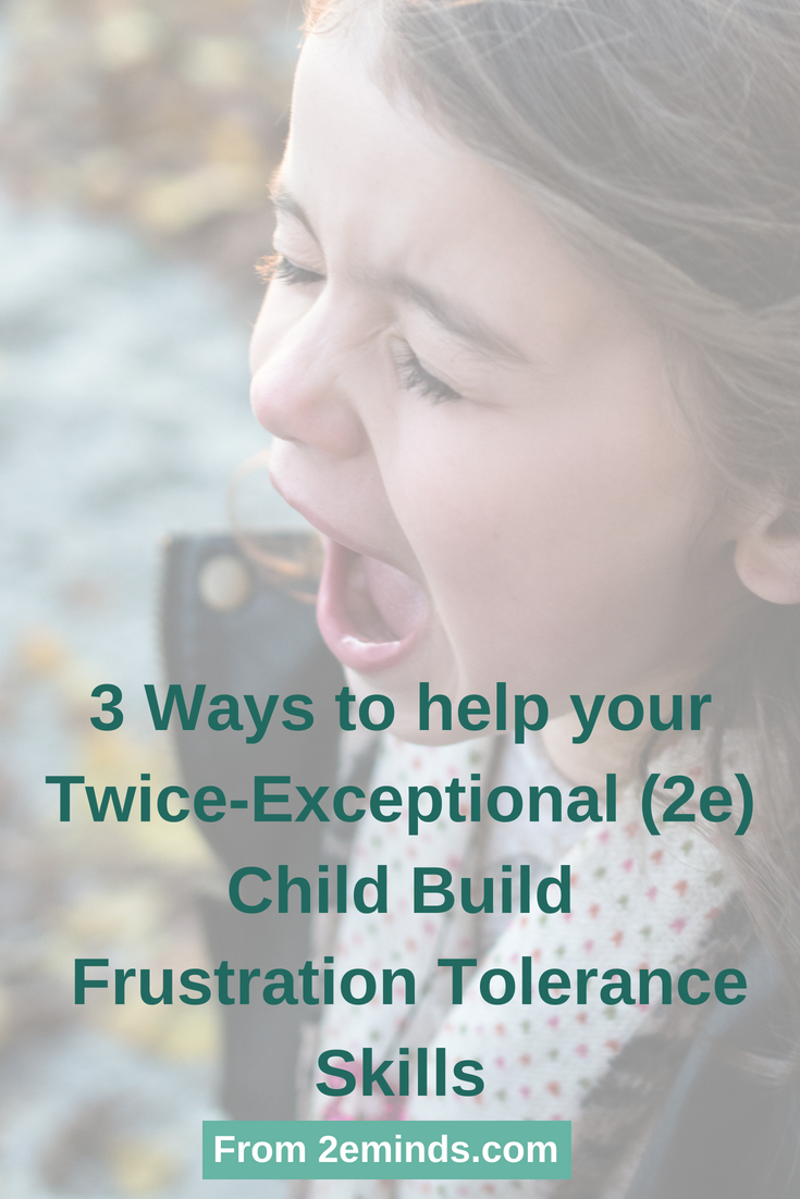Helping your Twice-Exceptional (2e) Child Build Fr
