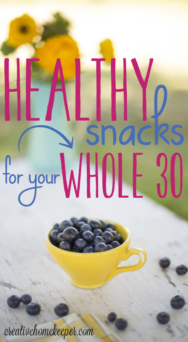 10 Healthy Snacks For Your Whole 30 Challenge Paleo