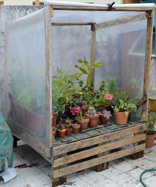 Invernadero Con Pallets Reutilizados Jardinería De Invernadero Invernadero Casero Jardinería
