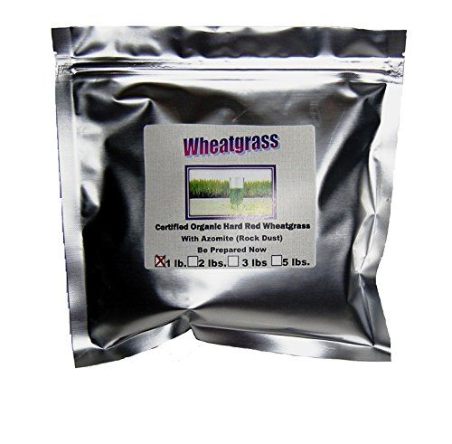 Certified Organic NonGMO Wheatgrass Seeds  1 Pound Guaranteed to Grow *** Be sure to check out this.