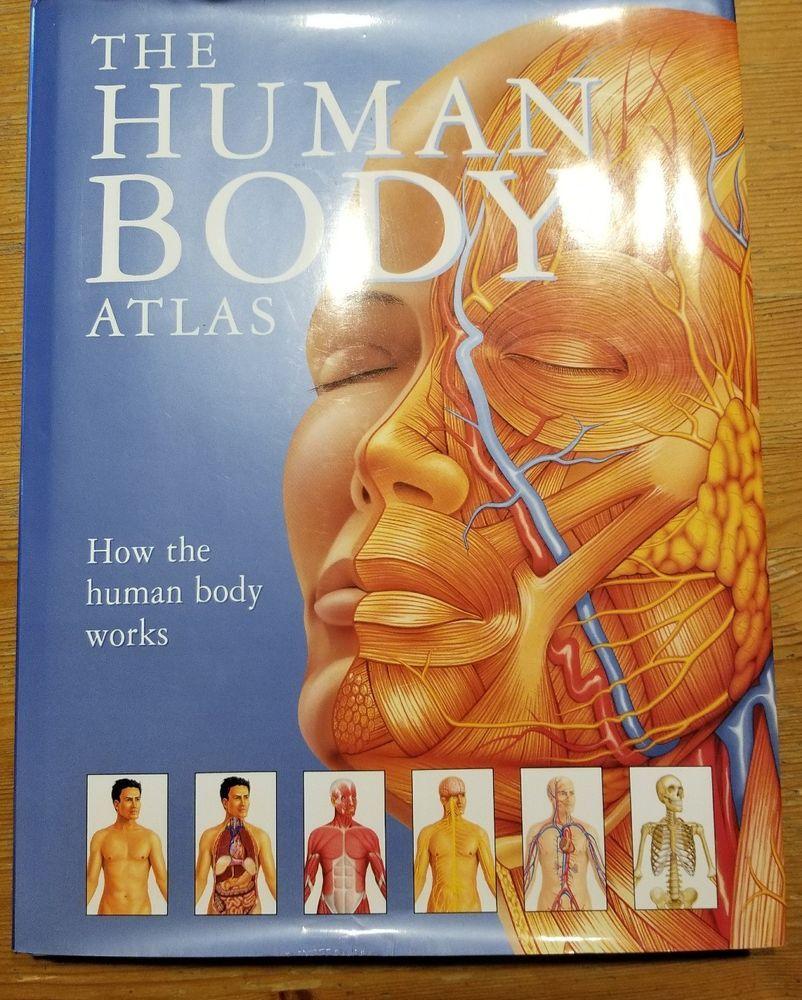 The Human Body Atlas How The Human Body Works Anatomy Health