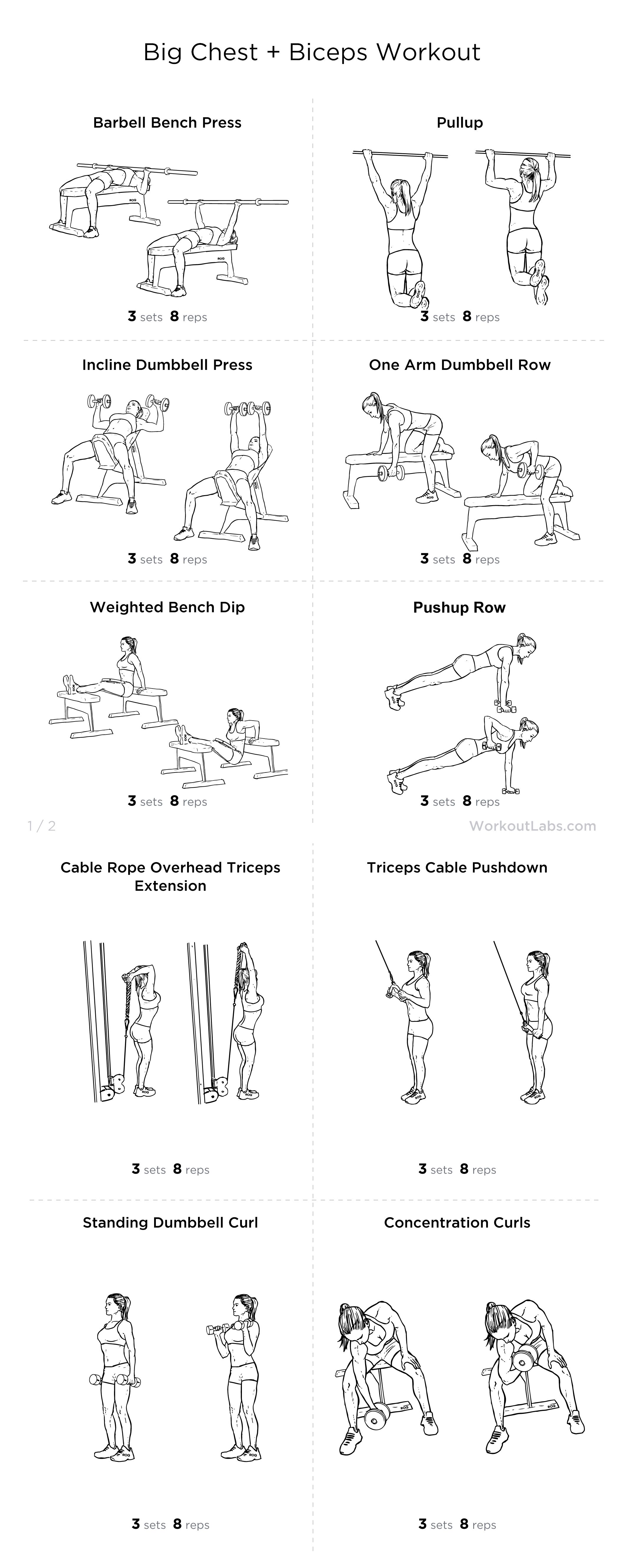 Big Chest Biceps Workout