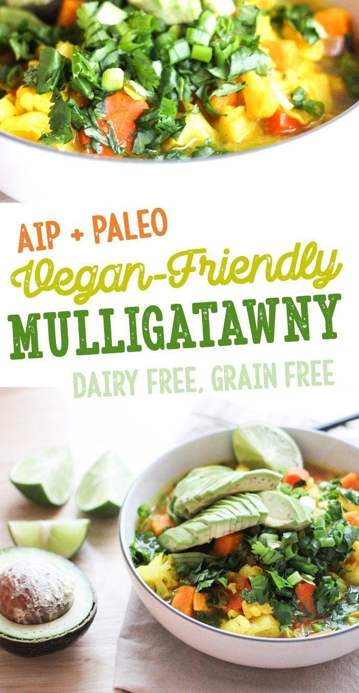 Mulligatawny Aip Paleo Vegan Friendly