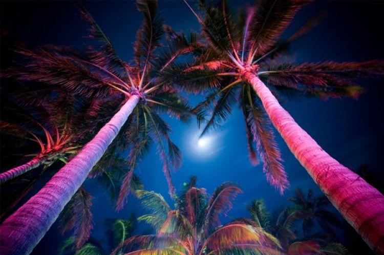 The Colors Of Miami South Beach Miami