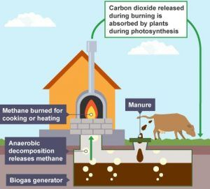 What Is A Biogas Generator And What Does It Do? | tabla | Biogas
