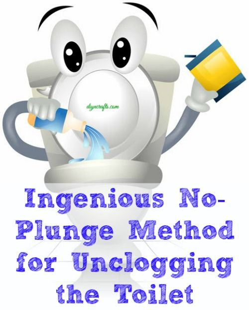No Need To Spend A Fortune On These: Ingenious No-Plunge Method For Unclogging The Toilet