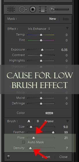 Lightroom brush auto mask