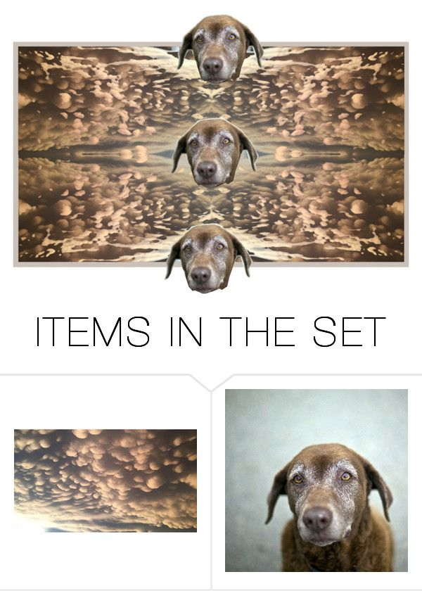 """Silver Muzzles Golden Years"" by rawrat ❤ liked on Polyvore featuring art"