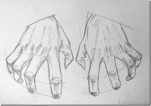 Connaissez Vous Ces étapes Pour Apprendre à Dessiner Une Main Blog Le Dessin Dessin Main Comment Dessiner Une Main Apprendre à Dessiner