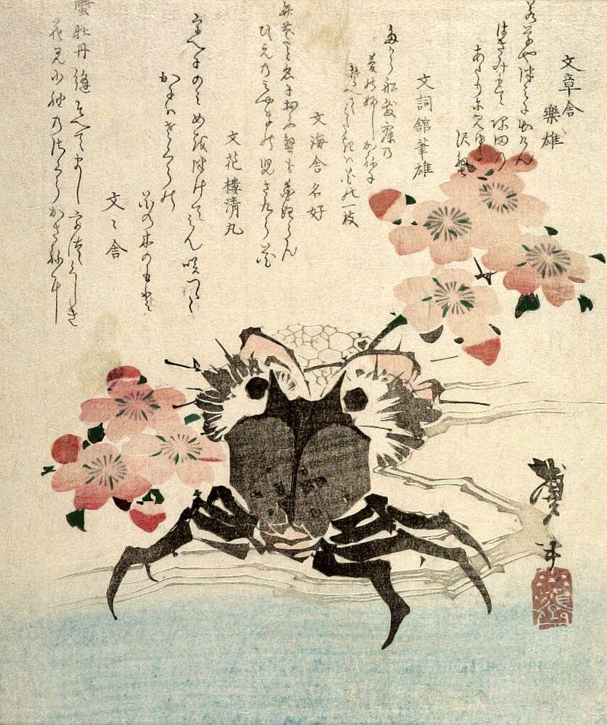 Katsushika Hokusai, Japanese (1760 - 1849)  Japanese print  Crab and