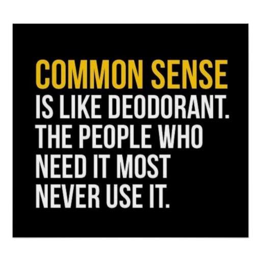 Common Sense Is Like Deodorant Poster | Zazzle.com