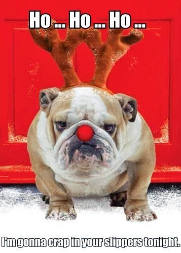 Christmas British Bulldog Merry Christmas Meme Funny Merry