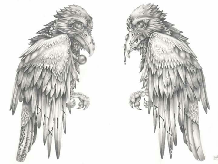 Bildergebnis Fur Odin Raben Nordische Runen