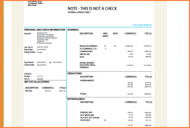 Free Paycheck Stub Template Pay Stub Image 5 Jpg Sales Report Template Free Printable Resume Templates Templates Free Business Proposal Template