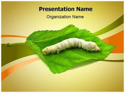 Silkworm Powerpoint Template Is One Of The Best PowerPoint Templates