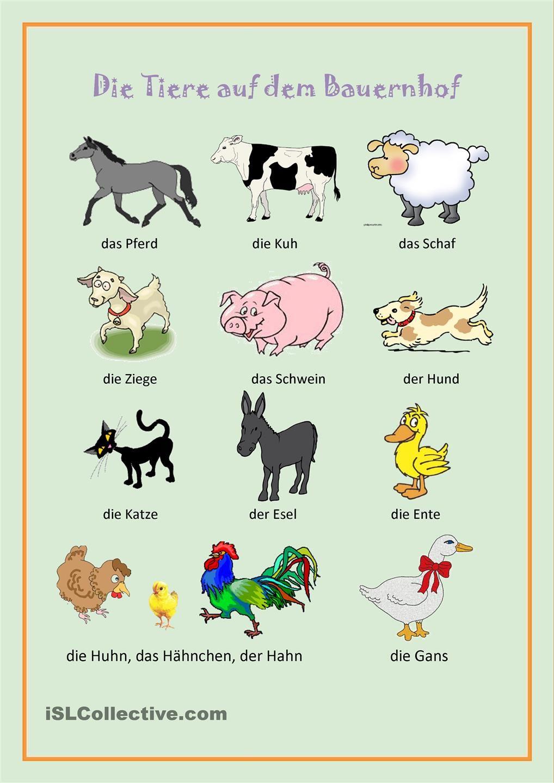 Die Tiere Auf Dem Bauernhof Bauernhof Tiere Bauernhof Kinder Tiere