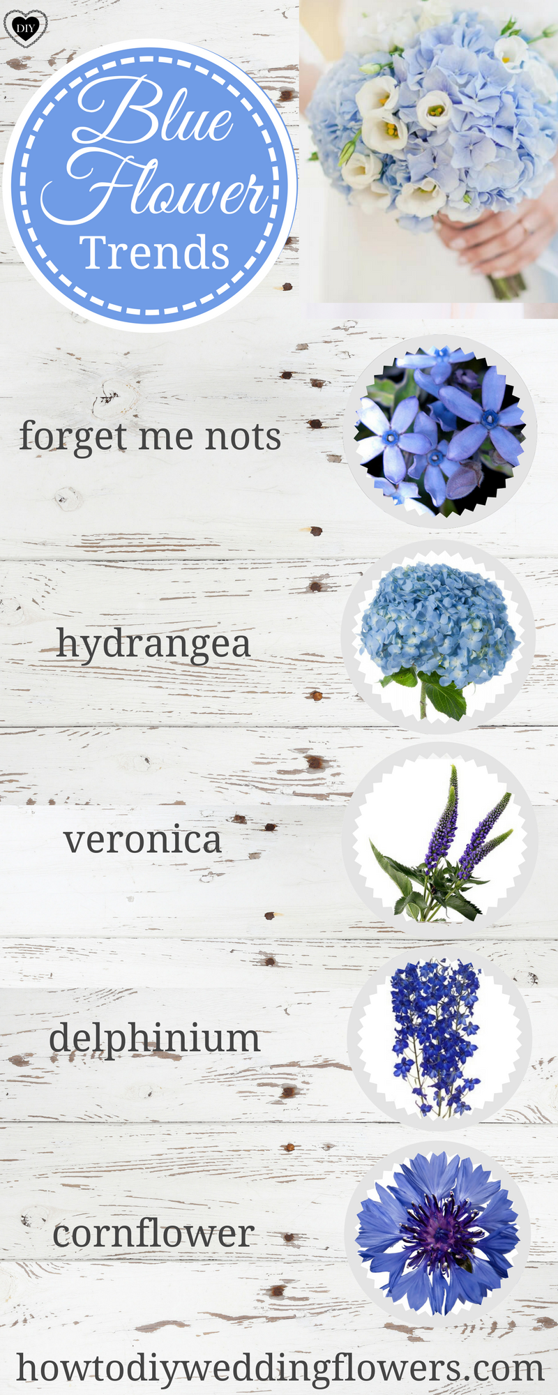 How To Make a Bouquet Flower Names by Color Flowers