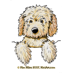 Pocket Goldendoodle Kiniart In 2020 Poodle Drawing Doodle