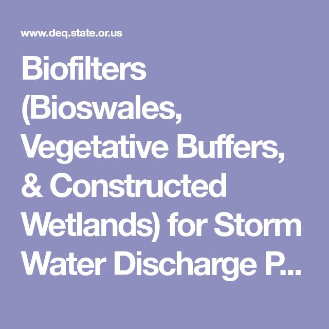 Best Biofilters Bioswales Vegetative Buffers Constructed 400 x 300