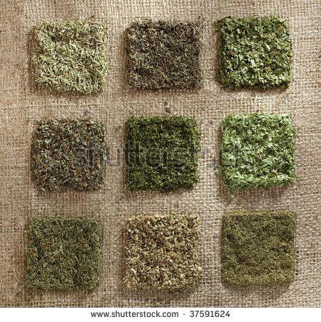 nine dried herb piles on jute hessian backdrop - rosemary, thyme, coriander leaves, basil, parsley, tarragon, dill, oregano, mint