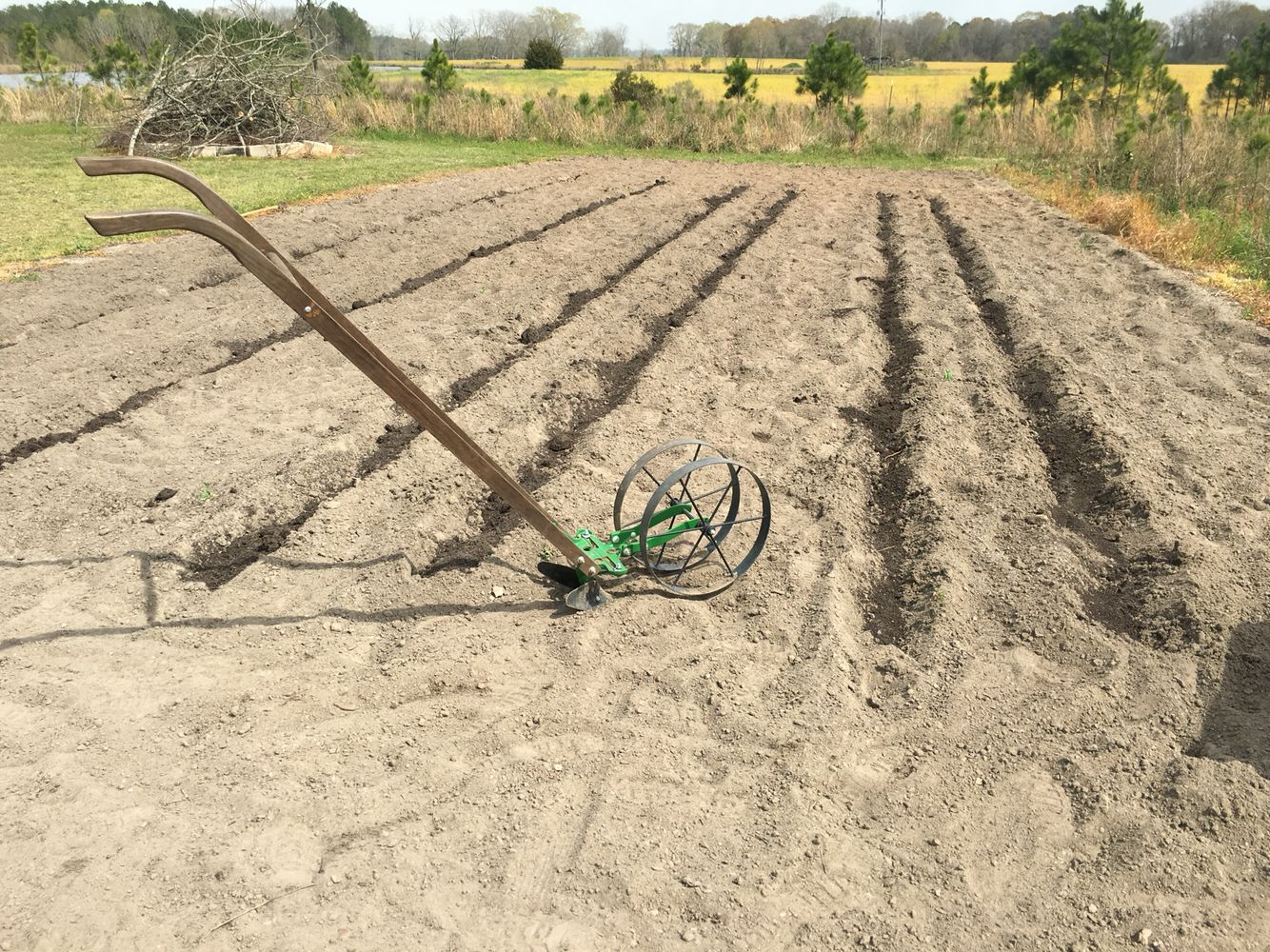 Laying Off Rows With The Wheel Hoe And Adding Compost So Many Common Garden Problems Can Be Prevent D By Simply Adding Garden Problems Garden Tools Lawn Care