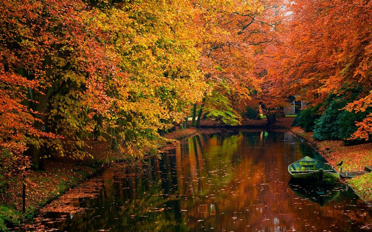 Look At These Colors Good Enough To Eat Scenery Wallpaper Autumn Landscape Fall Wallpaper