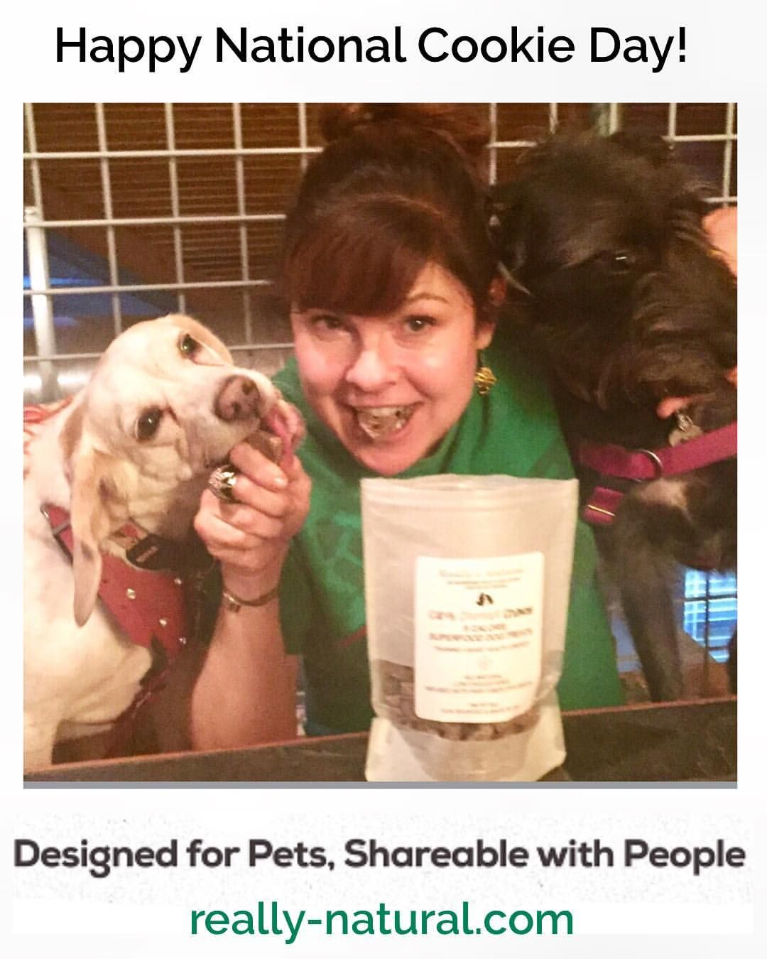 our tasty dog cookies are adored by dogs and pet parents love the healthy natural ingredients plus they re made in a overweight dog pet parent natural pet pinterest