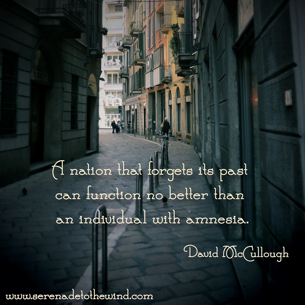 A nation that forgets its past can function no better than an individual with amnesia.   - David McCullough