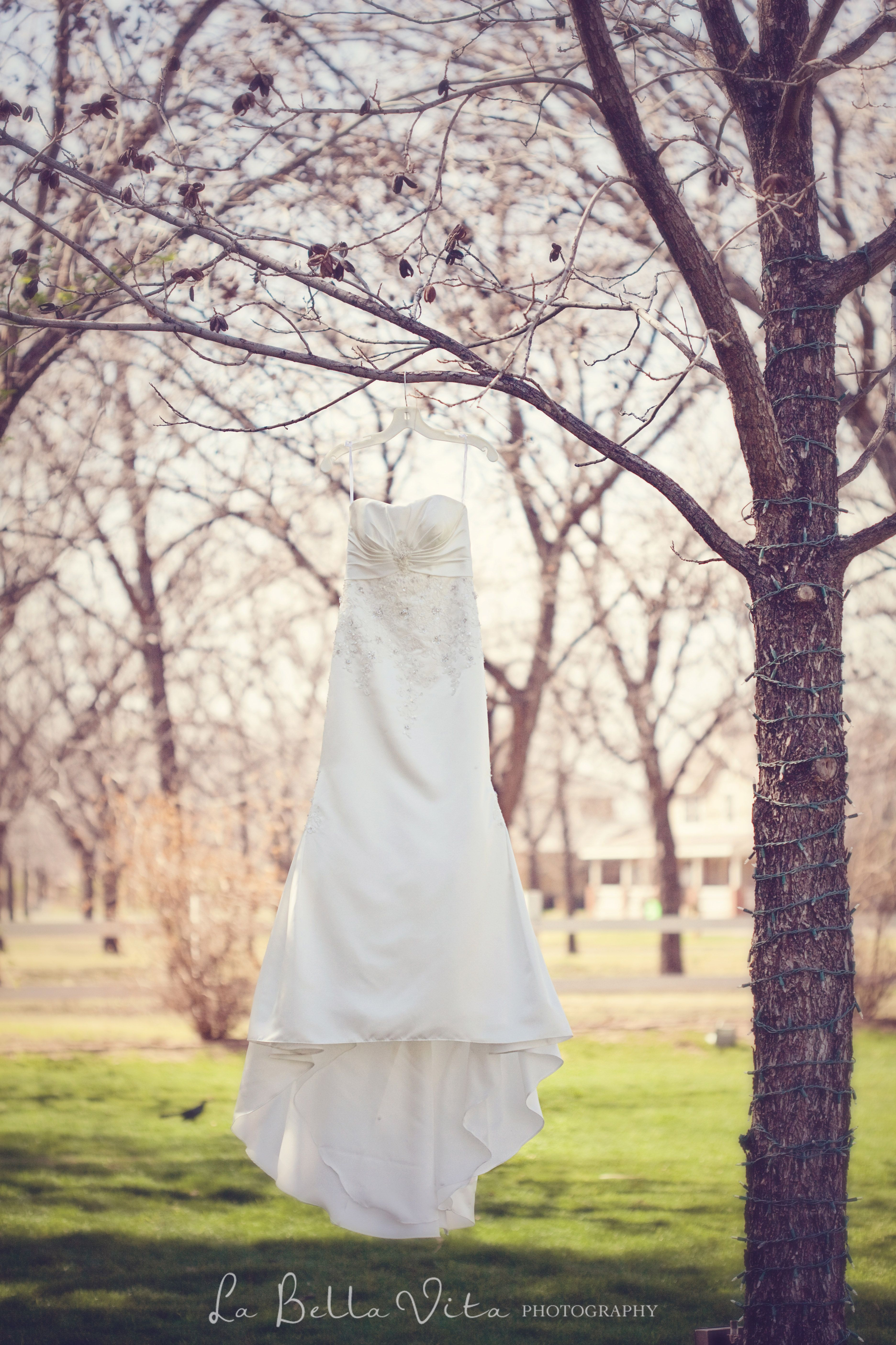 8fe1e4df4abb5 Venue at the Grove- Gorgeous dress and outdoor winter wedding scenery