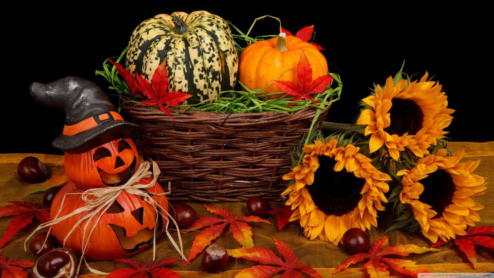 nice Halloween Decorations