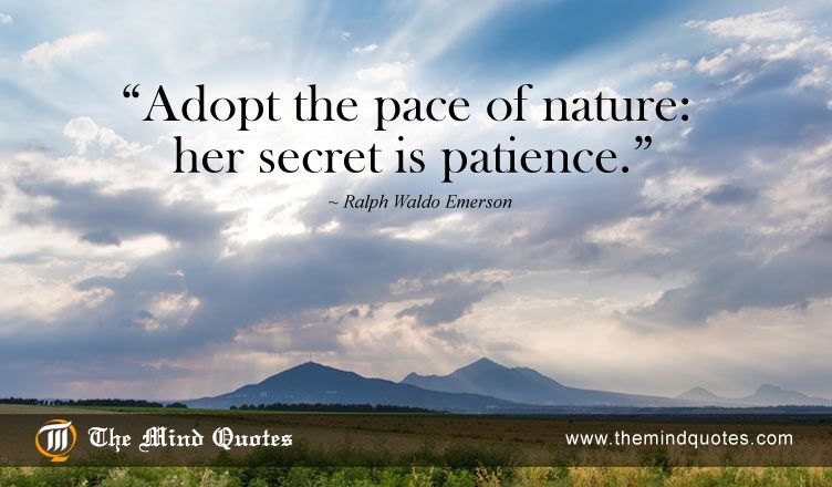 adopt the pace of nature her secret is patience ralph waldo  adopt the pace of nature her secret is patience ralph waldo emerson quotes on