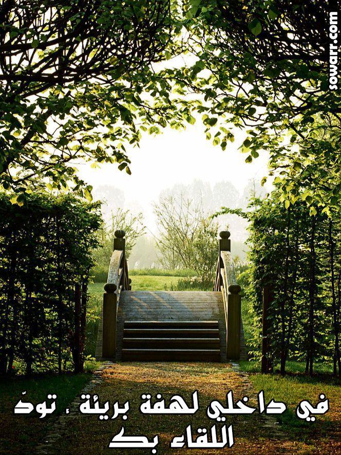 صور مضحكة صور اطفال صور و حكم موقع صور Arabic Quotes Hardscape Garden Inspiration Outdoor Gardens